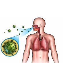Инфекции и вирусы, передающиеся воздушно капельным путем