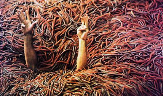Человек и черви