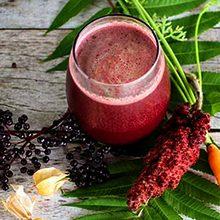 Сок плодов сумаха: целебные свойства и применение