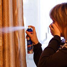 Обработка квартиры (дома) от вшей и гнид — правила дезинфекции
